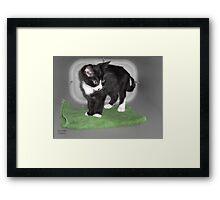 Magic Carpet Kitten Framed Print