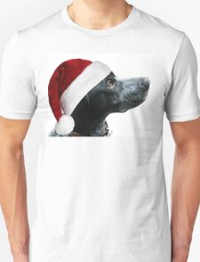 You Sure Those Reindeers Are Safe? T-Shirt