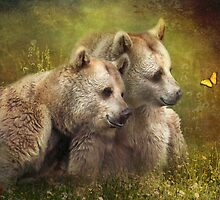 Bear Hugs by Trudi's Images