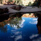 landscapes #228, sky above by stickelsimages