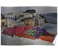 Flowerboxes in Oia Poster