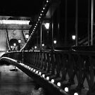 Bridge over the Danube by BlackhawkRogue