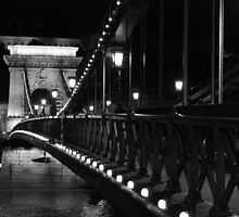 Bridge over the Danube by BlackhawkRogue
