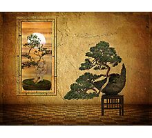 The Bonsai Room   Photographic Print