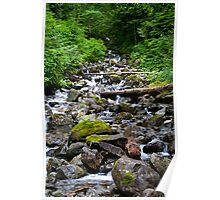 Mountainside Stream Poster