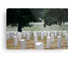 The Stregnth of our Fallen Soldiers Metal Print
