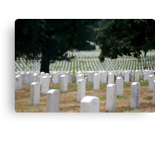 The Stregnth of our Fallen Soldiers Canvas Print