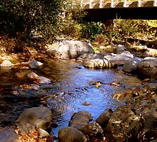 Under the Bridge....at Crabtree Falls ^ by ctheworld