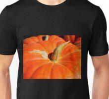 Orange For Fall Unisex T-Shirt