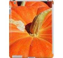 Orange For Fall iPad Case/Skin