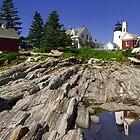 Seagull Soaring Past Pemaquid Point Light by Mark Van Scyoc