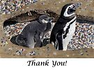 Looking Out For You - Mother & Baby Penguins Greeting Card by Patricia Barmatz