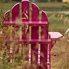 Sitting Pretty...in Pink! by Helen Vercoe