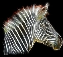 Zebra-Power Animals by Liane Pinel by Liane Pinel