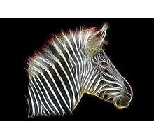 Zebra-Power Animals by Liane Pinel Photographic Print