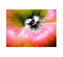 an apple a day.... Art Print