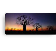 Spectacular boab sunset Canvas Print
