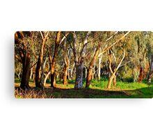 Tree Mania.. Canvas Print