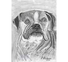Kyla  ~ sketch of an old lady! Photographic Print