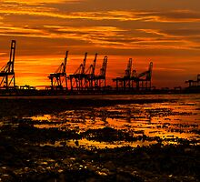 Sunset At The Port Of Felixstowe  by Darren Burroughs