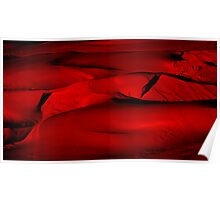 Dunes in Red Poster
