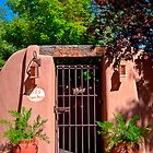 Santa Fe Door - Acequia Madre by TheBlindHog