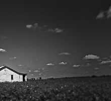 Sharecropper's Home by JMontrell