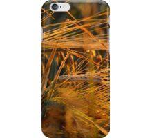Saskatchewan Barley iPhone Case/Skin