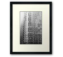 Pseudo Conifer Framed Print
