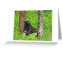 Mama bear and Baby bear Greeting Card