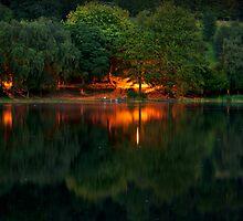 Mysterious Light by Svetlana Sewell