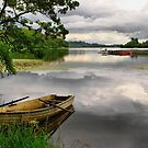 Lake of Menteith by jacqi