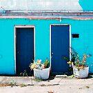 Blue Door by JMontrell