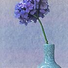 Blue and purple hydrangea in craquelé vase by IngeHG
