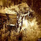 Overgrown by Rachel Meyer