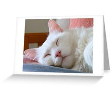 See Me In Shadows (Afternoon nap) Greeting Card