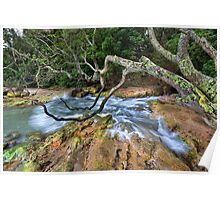 Whiritoa blow hole back wash Poster