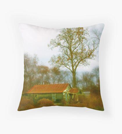 Sharecropper's Home II Throw Pillow