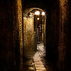 Arched Walkway by vividpeach