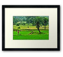 Incredible India-3/2011 Framed Print