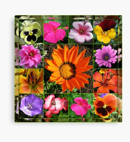 Sunlit Summer Flowers Collage Canvas Print