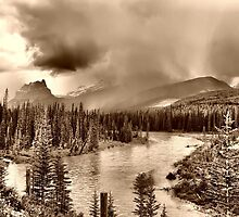 Bow River Along the Icefield Parkway by Vickie Emms