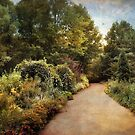 The Garden Path by Jessica Jenney