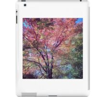 Spring Tree Scene iPad Case/Skin