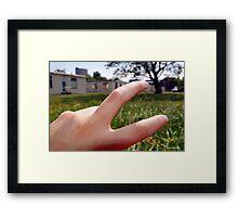 Grab it, hold onto Life. Framed Print