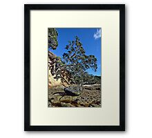 Waimama Bay Lone Rock Framed Print