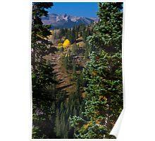 Colorado Mountainside Poster