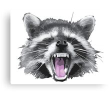 Another raccoon Canvas Print