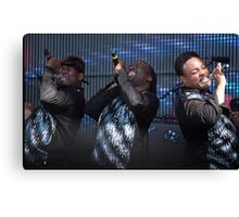Rewind festival 2011 Earth Wind and Fire Canvas Print
