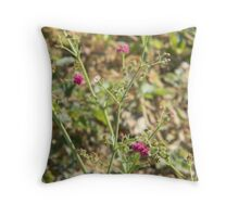 Growing in Drought - Western Ironweed Throw Pillow